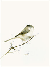Gallery print  Long-tailed tit - Dearpumpernickel
