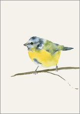 Wall sticker  Blue tit - Dearpumpernickel