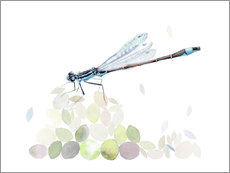 Wall sticker Dragonfly Building
