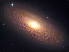 Wall sticker  NGC 2841, spiral galaxy in Ursa Major. - Robert Gendler
