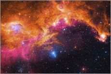 Gallery print  the seagull nebula - Robert Gendler