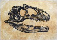 Wall sticker  Allosaurus dinosaur skull. - Harm Plat