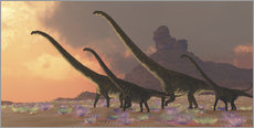 Gallery Print  A family of Mamenchisaurus dinosaurs. - Corey Ford