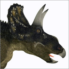 Wall sticker  Nedoceratops portrait - Corey Ford