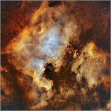 Wall sticker The North America Nebula and Pelican Nebula in Cygnus.