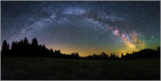 Gallery print  Milky Way arching over the trees - Matthias Köstler