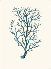 Wall sticker  coral blue - Patruschka