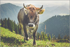 Wall sticker  Cow in the mountains - Michael Helmer