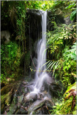 Gallery print  Waterfall in Harz - Dennis Stracke
