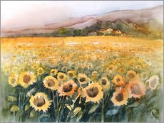Wall Stickers  Sunflower field in the Luberon, Provence - Eckard Funck