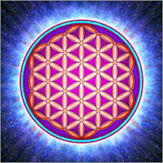Wall sticker Flower Of Life - Primal Energy