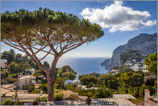 Wall Stickers  Dream island of Capri in the Gulf of Naples (Italy) - Christian Müringer