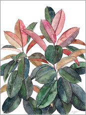 Gallery print  Rubber Plant - Micklyn Le Feuvre