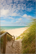 Gallery print  Narrow path to the beach