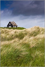 Wall sticker  Cottage in the dunes during storm