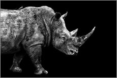Gallery print  Safari Profile Collection - Rhino Black Edition - Philippe HUGONNARD