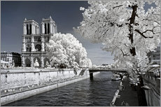 Gallery print  Infrared - Notre Dame in Paris - Philippe HUGONNARD