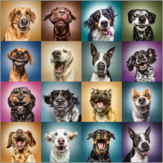Wall Sticker  Funny dog faces - Manuela Kulpa