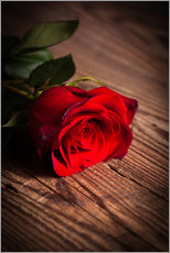 Gallery print  Red rose on wood