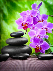 Wall sticker Zen basalt stones and orchid