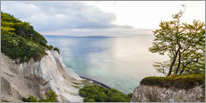 Wall sticker  The white chalk Cliffs of Mon - Dieterich Fotografie