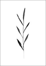 Wall Stickers  Minimalist Leaf - RNDMS