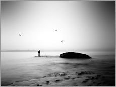 Wall sticker  Lucidity - George Christakis