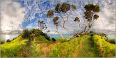 Gallery print  Russell - New Zealand - Bay of Island - Michael Rucker