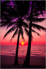 Wall sticker  Palm trees and tropical sunset