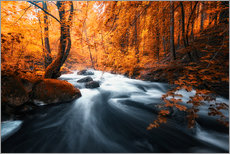 Wall sticker  Autumn woods and creek - Oliver Henze