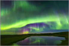 Wall sticker  Northern Lights - Dave Derbis