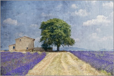 Wall Stickers  Provence picturesque - Joachim G. Pinkawa