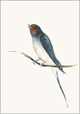 Gallery print  Swallow - Dearpumpernickel