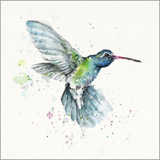 Gallery print  Hummingbird flurry - Sillier Than Sally