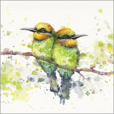 Wall Stickers Family (Rainbow Bee Eaters)