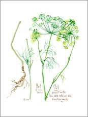 Wall sticker Herbs & Spices collection: Dill