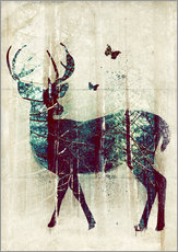 Gallery print  Deer in the Wild - Sybille Sterk