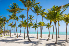 Gallery print  Juanillo Beach, Cap Cana, Punta Cana, Dominican Republic, West Indies, Caribbean, Central America - Jane Sweeney