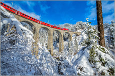 Gallery print  Bernina Express passes through the snowy woods around Filisur, Canton of Grisons (Graubunden), Switz - Roberto Moiola