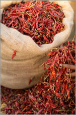 Gallery print  Dried red chilies, Sri Lanka, Asia - John Alexander