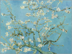 Wall sticker  Almond blossom - Vincent van Gogh