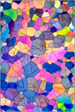 Canvas print  Caffeine crystals, light micrograph - David Parker