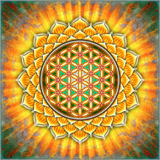 Wall sticker  Flower of life - yellow lotus - Dirk Czarnota