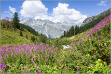 Wall sticker  Flowers in the summer in the Engadine in Switzerland - Jan Christopher Becke