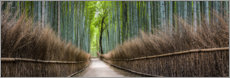 Wall sticker  Bamboo Forest Panorama in Sagano Arashiyama in Kyoto, Japan - Jan Christopher Becke