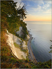 Gallery print  Chalk cliffs in the morning light - Andreas Vitting
