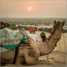 Wall sticker Sunset in the Thar Desert