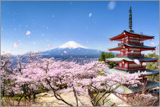 Gallery print  Chureito Pagoda and Mount Fuji in spring, Japan - Jan Christopher Becke