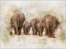 Peter Roder - Elephants in the savannah in Africa