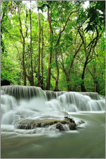 Wall sticker Waterfall in forest of Thailand